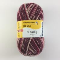 Regia 4 fach Norway Color Farbe 2915