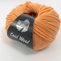 Lana Grossa Cool Wool Farbe 2029