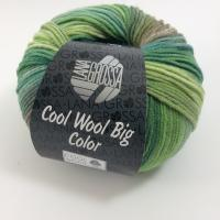 Lana Grossa Cool Wool Big Color Farbe 4002