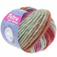 Lana Grossa Feltro Color melange Farbe 1004.jpg