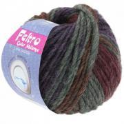 Lana Grossa Feltro Color melange Farbe 1007.jpg