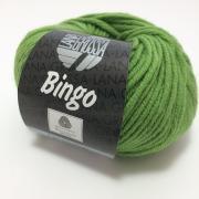 Lana Grossa Bingo Farbe 88