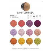 fs2020-ecopuno-farbkarte-ganzjahresgarn-lana-grossa.jpg