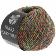Lana Grossa Bingo Funky Print Farbe 406.jpg