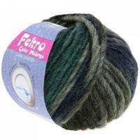 Lana Grossa Feltro Color melange Farbe 1003.jpg