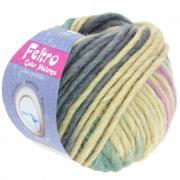 Lana Grossa Feltro Color melange Farbe 1011.jpg