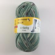 Regia 4 fach Norway Color Farbe 2912
