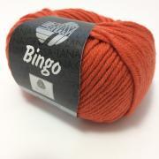 Lana Grossa Bingo Farbe 155