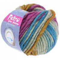 Lana Grossa Feltro Color melange Farbe 1008.jpg