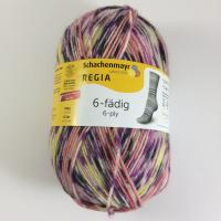 Regia 6 fach Digital Adventure Color Farbe 6080